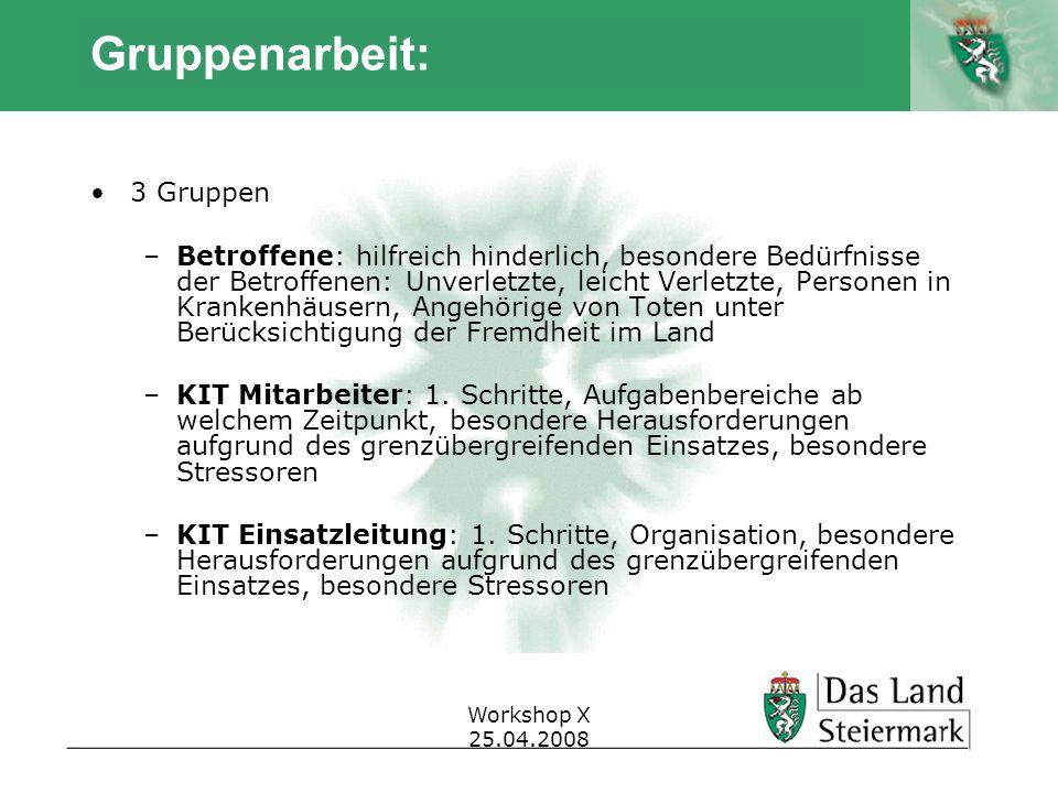 Autor Workshop X 25.04.2008 Gruppenarbeit: 3 Gruppen –Betroffene: hilfreich hinderlich, besondere Bedürfnisse der Betroffenen: Unverletzte, leicht Ver
