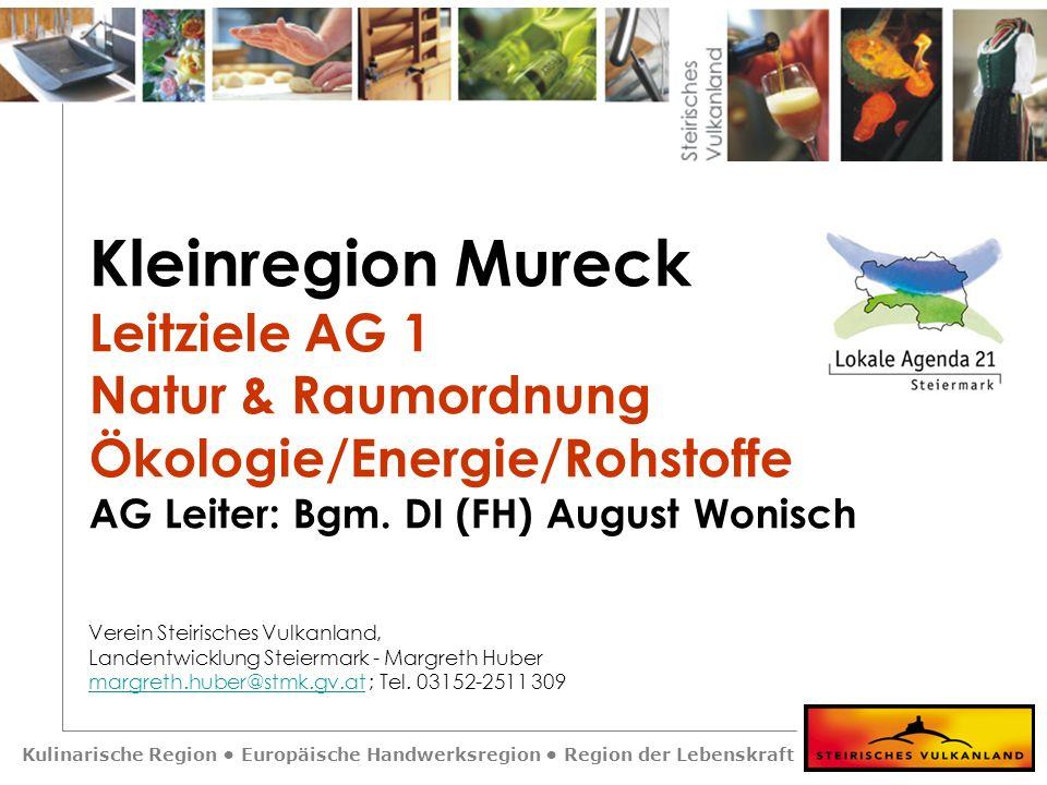 Kulinarische Region Europäische Handwerksregion Region der Lebenskraft Kleinregion Mureck Leitziele AG 3 Technische Infrastruktur Bauten / Geräte / Anlagen AG Leiter: Bgm.