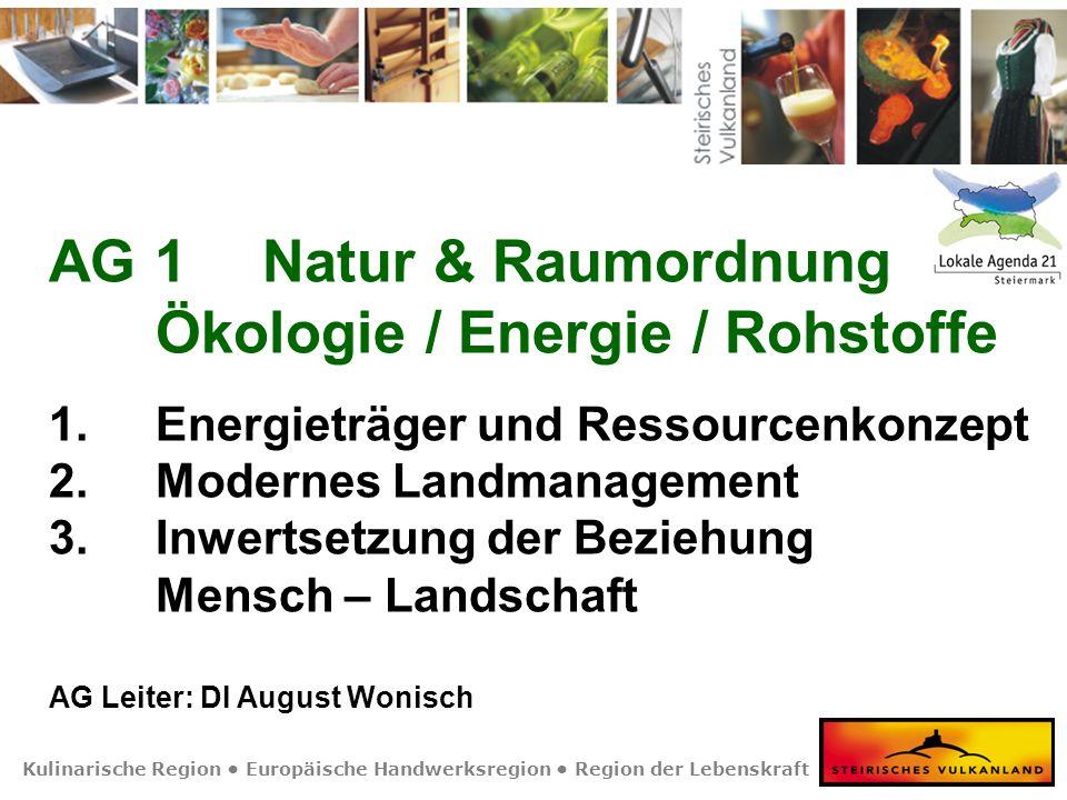 Kulinarische Region Europäische Handwerksregion Region der Lebenskraft AG 1Natur & Raumordnung Ökologie / Energie / Rohstoffe 1. Energieträger und Res