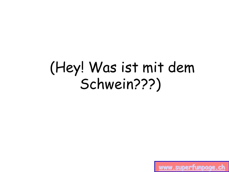 www.superfunpage.ch (Hey! Was ist mit dem Schwein )