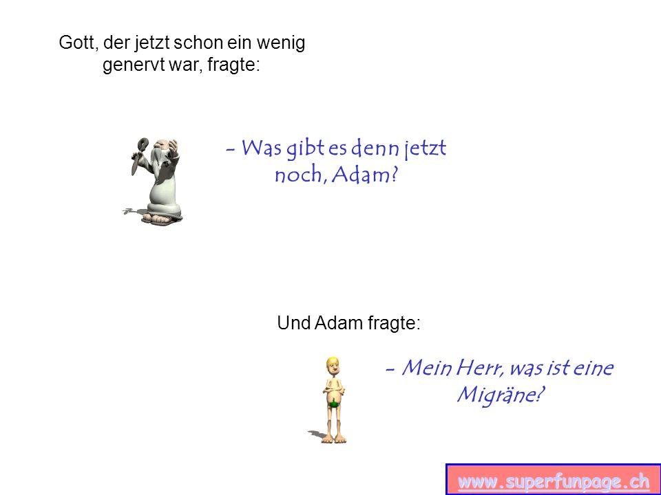 www.superfunpage.ch - Was gibt es denn jetzt noch, Adam.