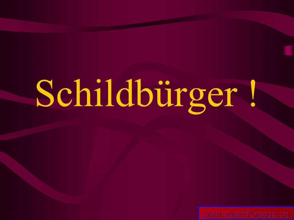 www.superfunpage.ch Schildbürger !