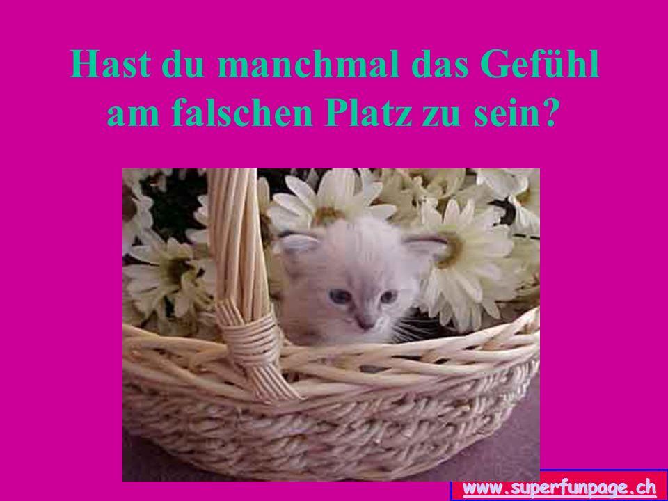 www.superfunpage.ch Hast du das Gefühl, dass dein Lebensraum eingeschränkt wird.