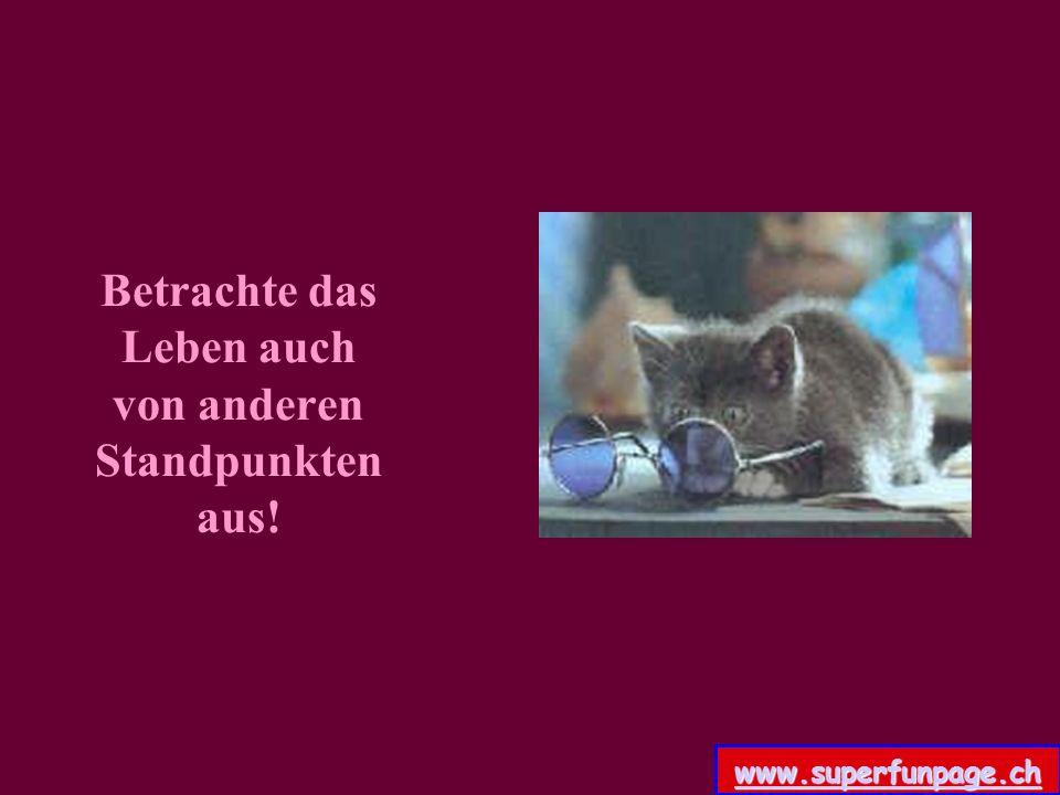 Betrachte das Leben auch von anderen Standpunkten aus! www.superfunpage.ch