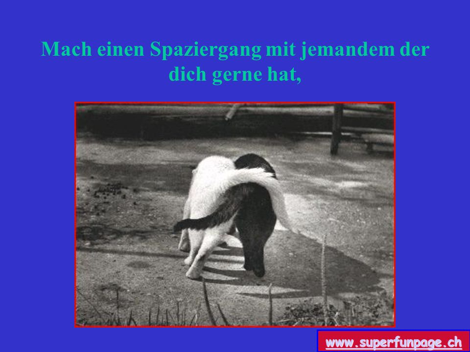Mach einen Spaziergang mit jemandem der dich gerne hat, www.superfunpage.ch