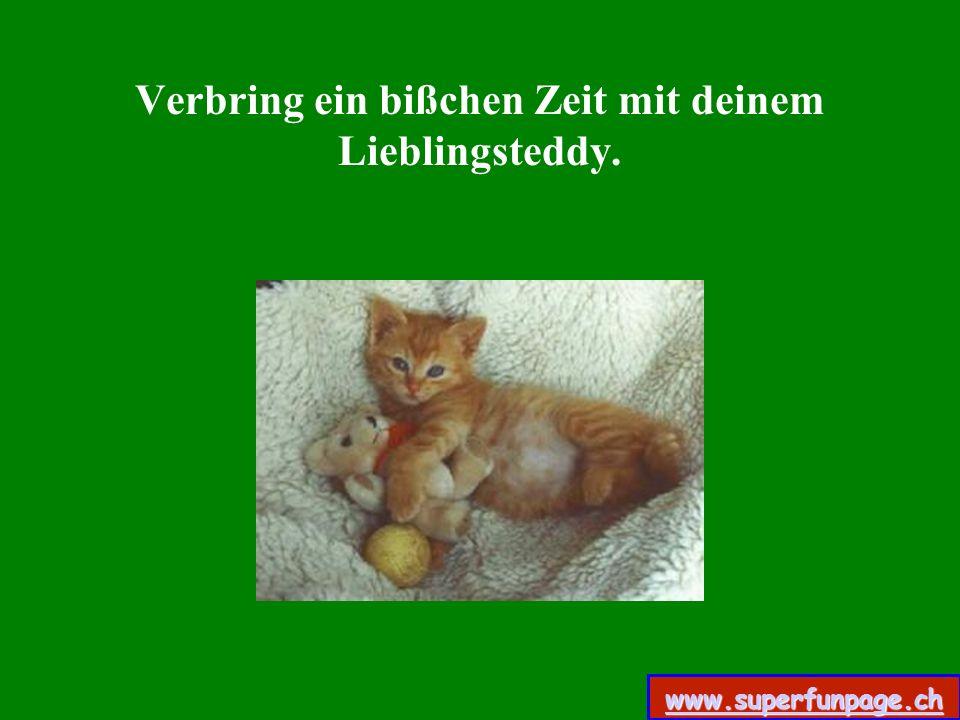 Verbring ein bißchen Zeit mit deinem Lieblingsteddy. www.superfunpage.ch