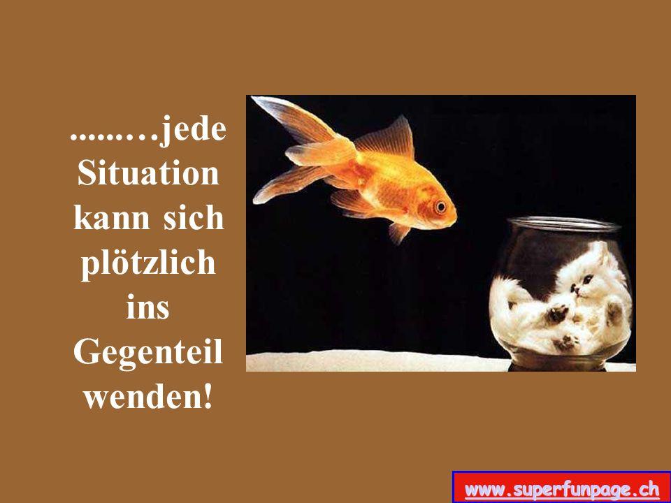 ......…jede Situation kann sich plötzlich ins Gegenteil wenden! www.superfunpage.ch