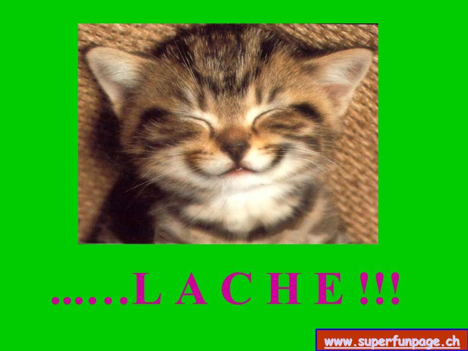...…L A C H E !!! www.superfunpage.ch