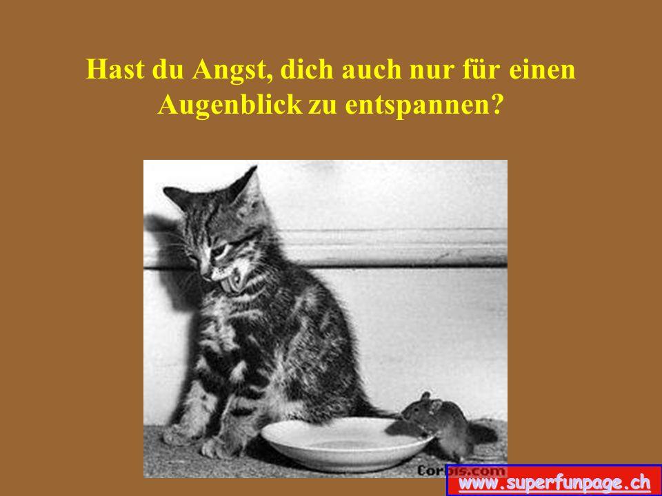 Hast du ein Völlgefühl, nach einem eiligen Mittagessen? www.superfunpage.ch