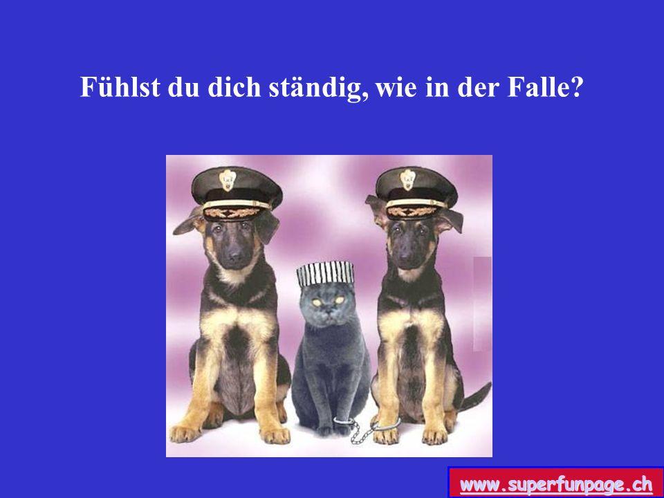Fühlst du dich ständig, wie in der Falle? www.superfunpage.ch