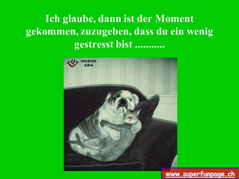 ....…ist es auch für die anderen leichter, liebevoll mit uns zu sein. www.superfunpage.ch