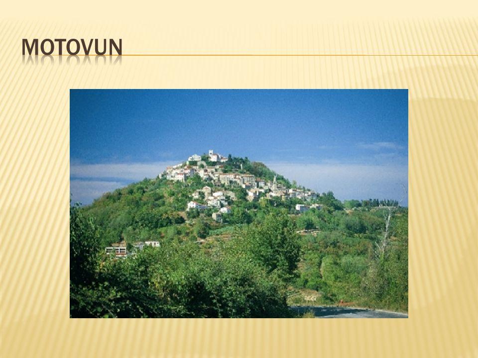 Im Eichenwald unterhalb von Motovun kann man den beliebten Weißen Trüffel finden.
