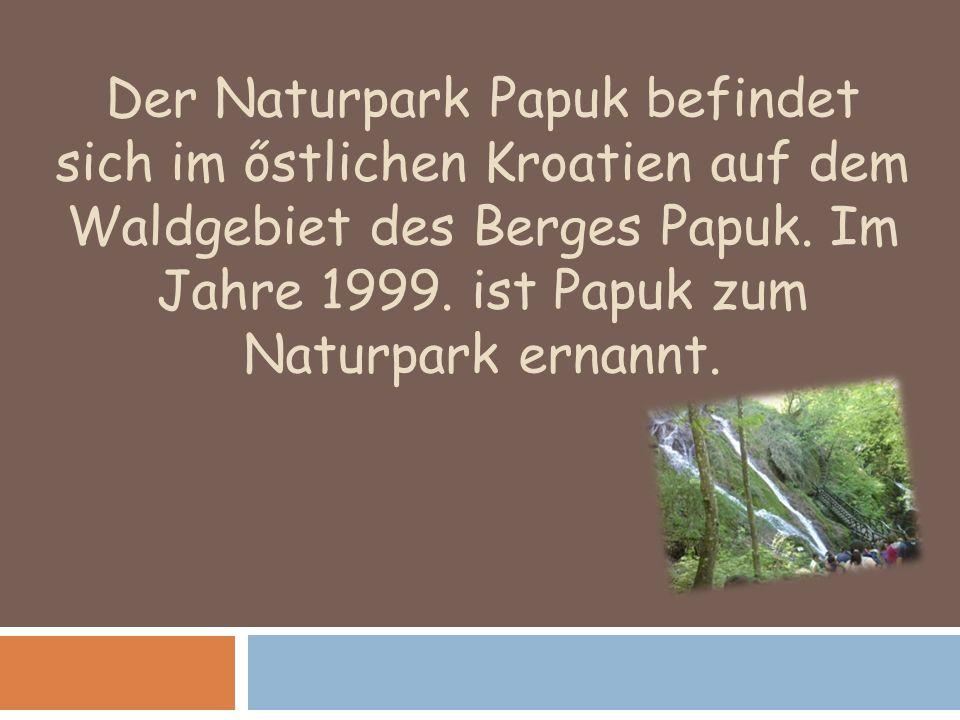 Der Naturpark Papuk befindet sich im őstlichen Kroatien auf dem Waldgebiet des Berges Papuk. Im Jahre 1999. ist Papuk zum Naturpark ernannt.