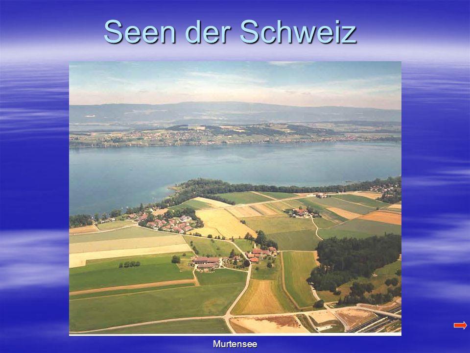 Seen der Schweiz Murtensee