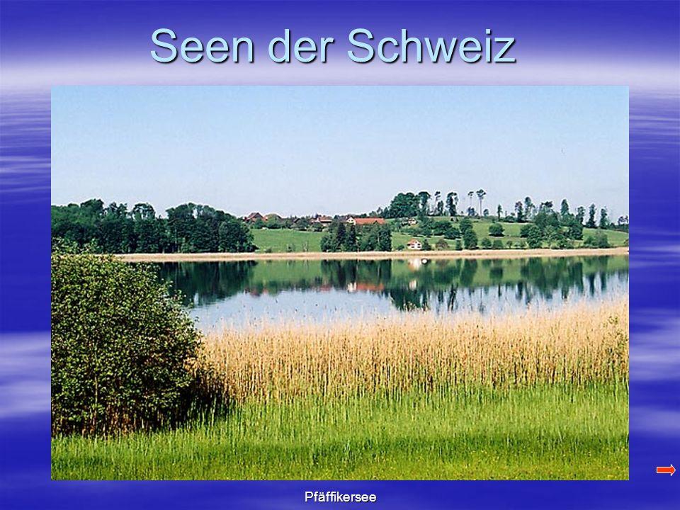 Seen der Schweiz Pfäffikersee