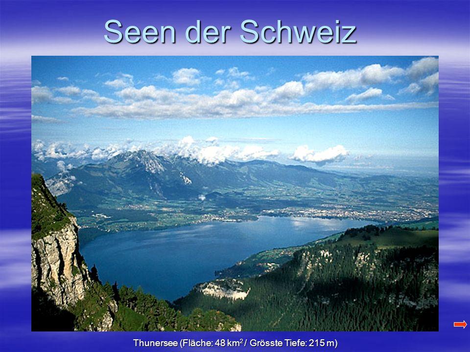 Seen der Schweiz Thunersee (Fläche: 48 km 2 / Grösste Tiefe: 215 m)