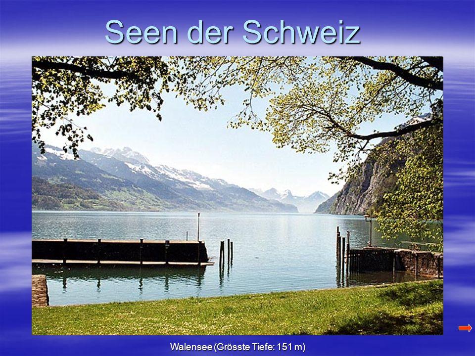 Seen der Schweiz Walensee (Grösste Tiefe: 151 m)