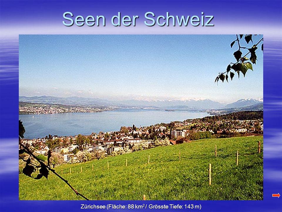 Seen der Schweiz Zürichsee (Fläche: 88 km 2 / Grösste Tiefe: 143 m)