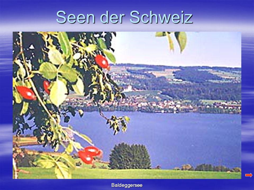 Seen der Schweiz Baldeggersee