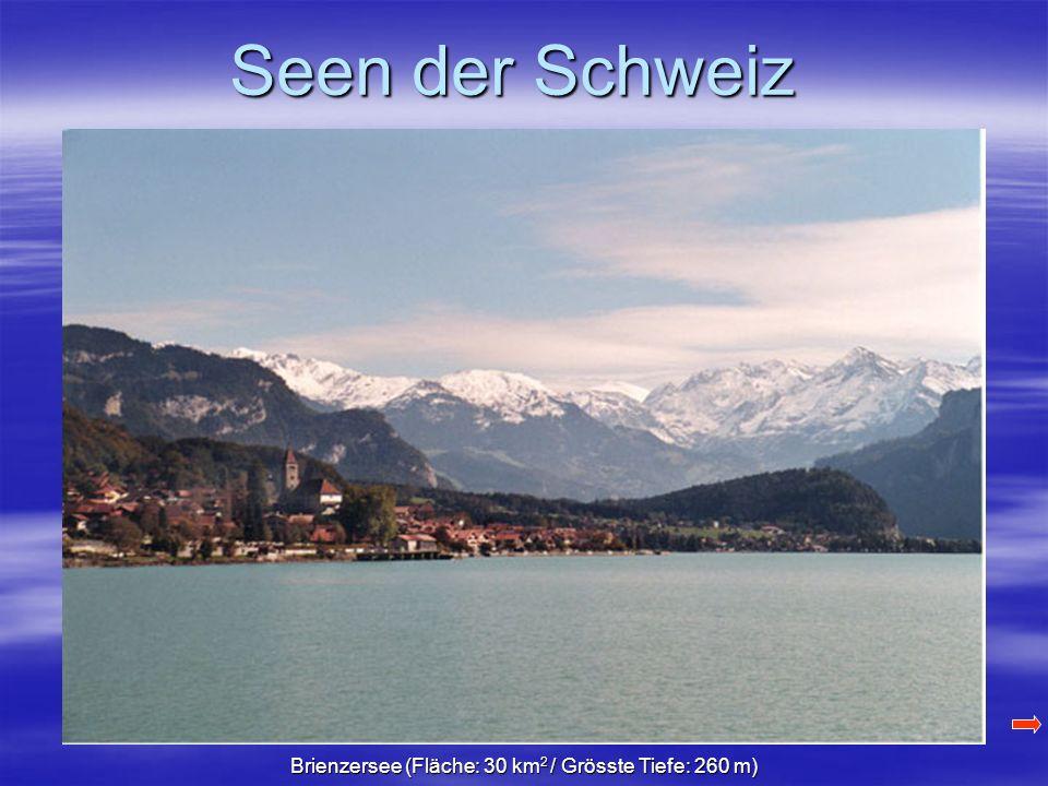 Seen der Schweiz Brienzersee (Fläche: 30 km 2 / Grösste Tiefe: 260 m)