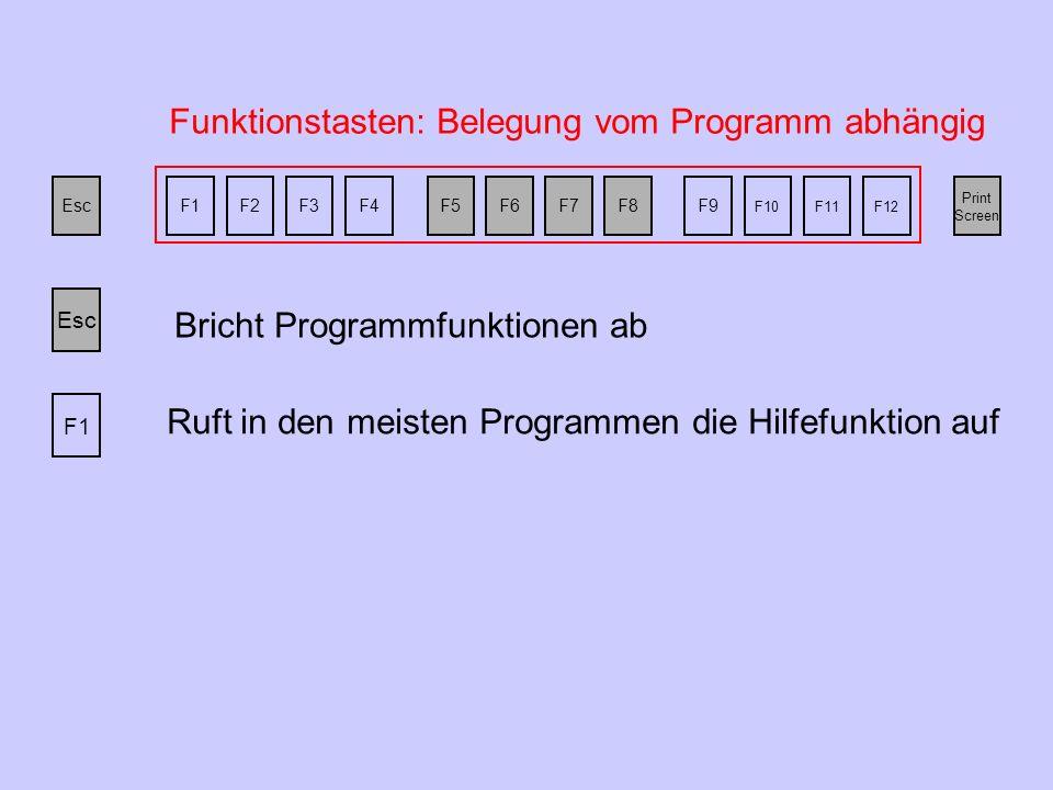 Esc F1F2F3F4F5F6F7F8F9 F10F11F12 Print Screen Funktionstasten: Belegung vom Programm abhängig Bricht Programmfunktionen ab Esc F1 Ruft in den meisten