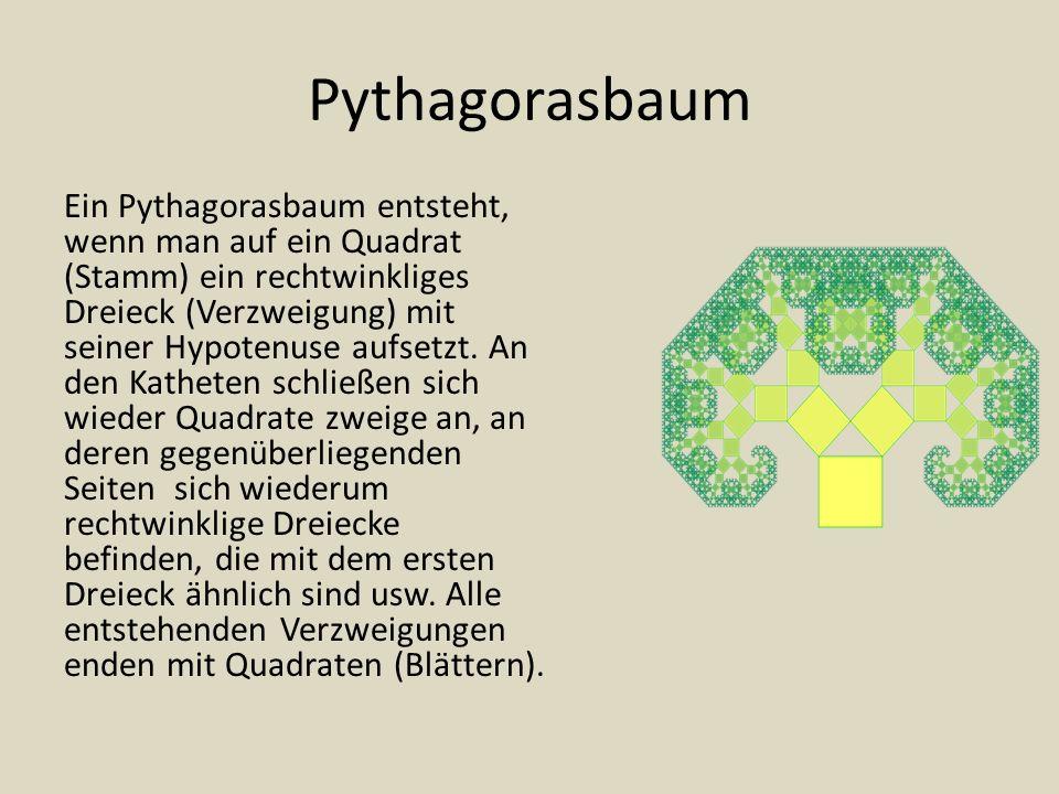 Pythagorasbaum Ein Pythagorasbaum entsteht, wenn man auf ein Quadrat (Stamm) ein rechtwinkliges Dreieck (Verzweigung) mit seiner Hypotenuse aufsetzt.