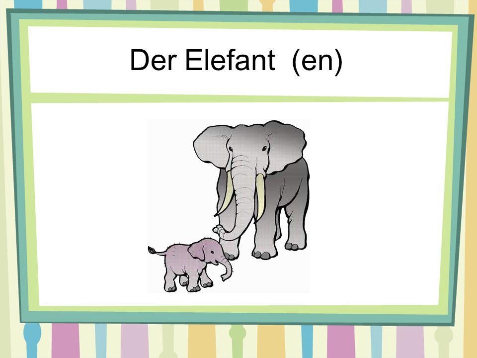 Der Elefant (en)