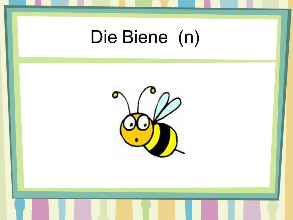 Die Biene (n)