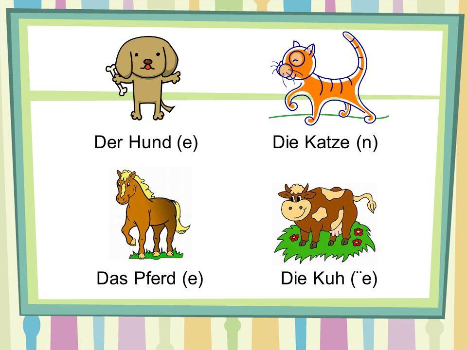Der Hund (e)Die Katze (n) Das Pferd (e)Die Kuh (¨e)