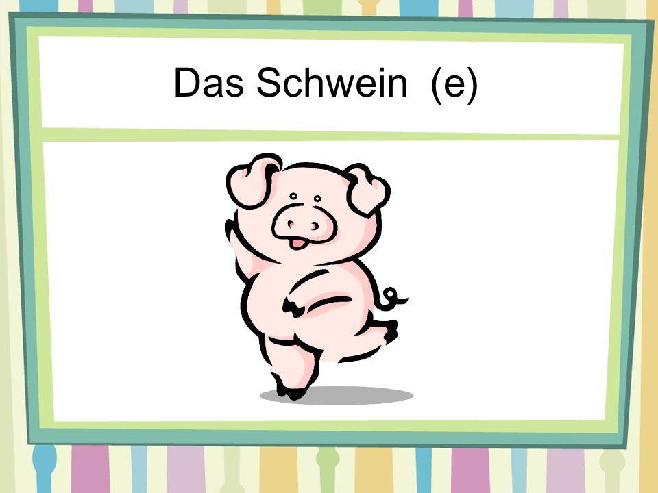 Das Schwein (e)