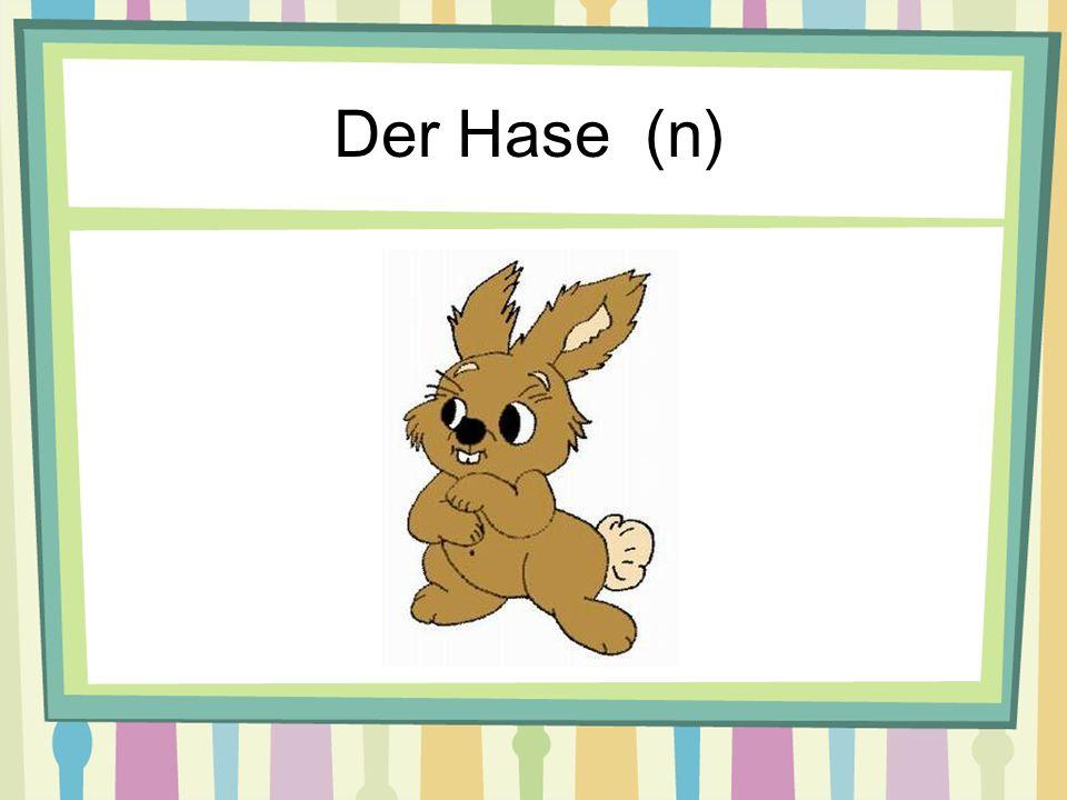 Der Hase (n)