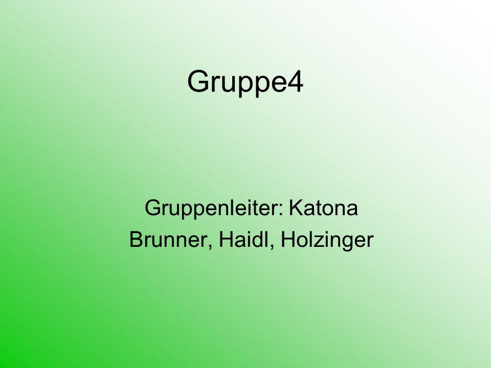 Gruppe4 Gruppenleiter: Katona Brunner, Haidl, Holzinger