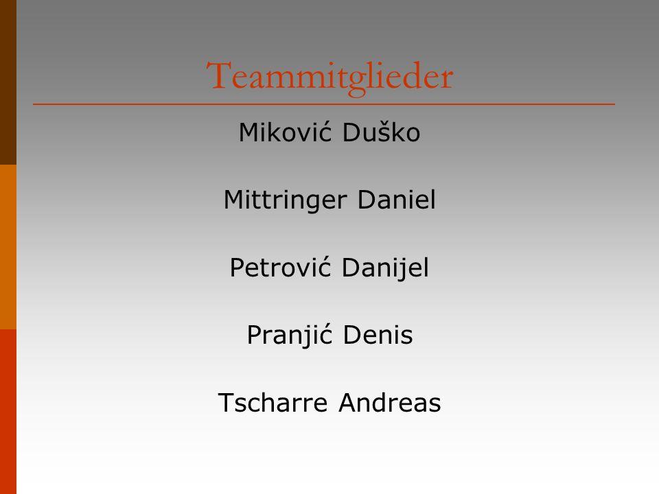 Teammitglieder Miković Duško Mittringer Daniel Petrović Danijel Pranjić Denis Tscharre Andreas