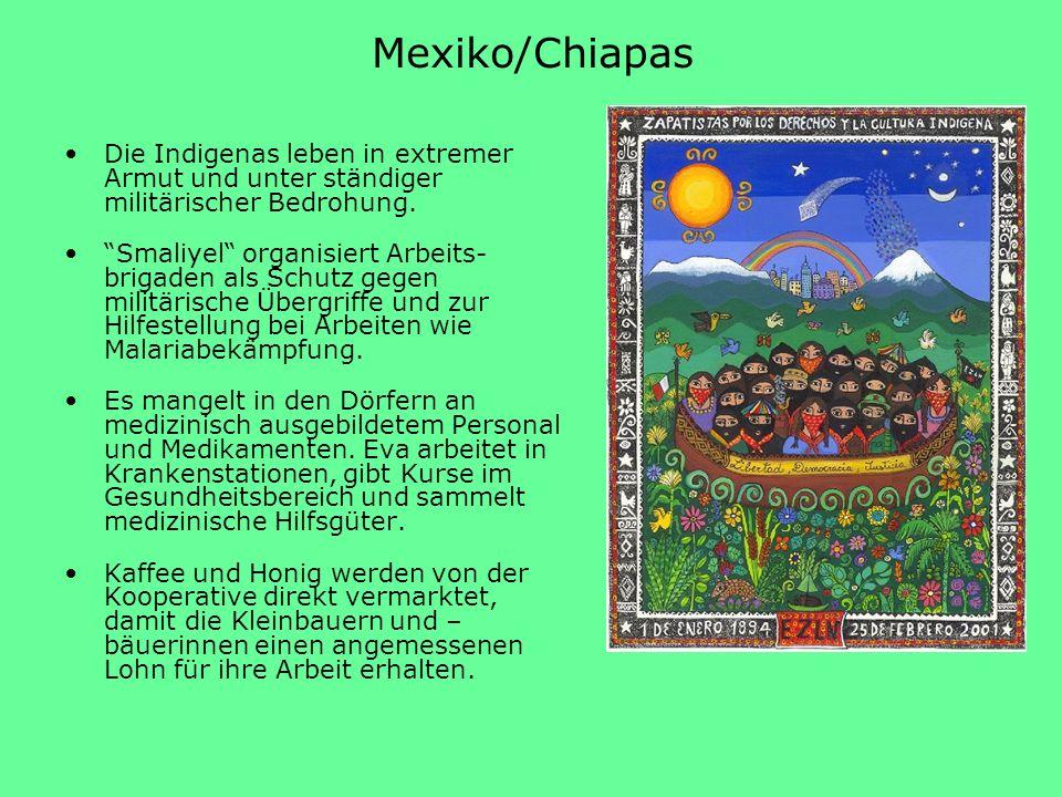 Mexiko/Chiapas Die Indigenas leben in extremer Armut und unter ständiger militärischer Bedrohung. Smaliyel organisiert Arbeits- brigaden als Schutz ge