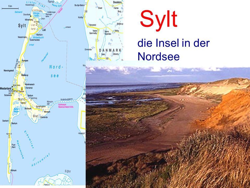 Sylt die Insel in der Nordsee