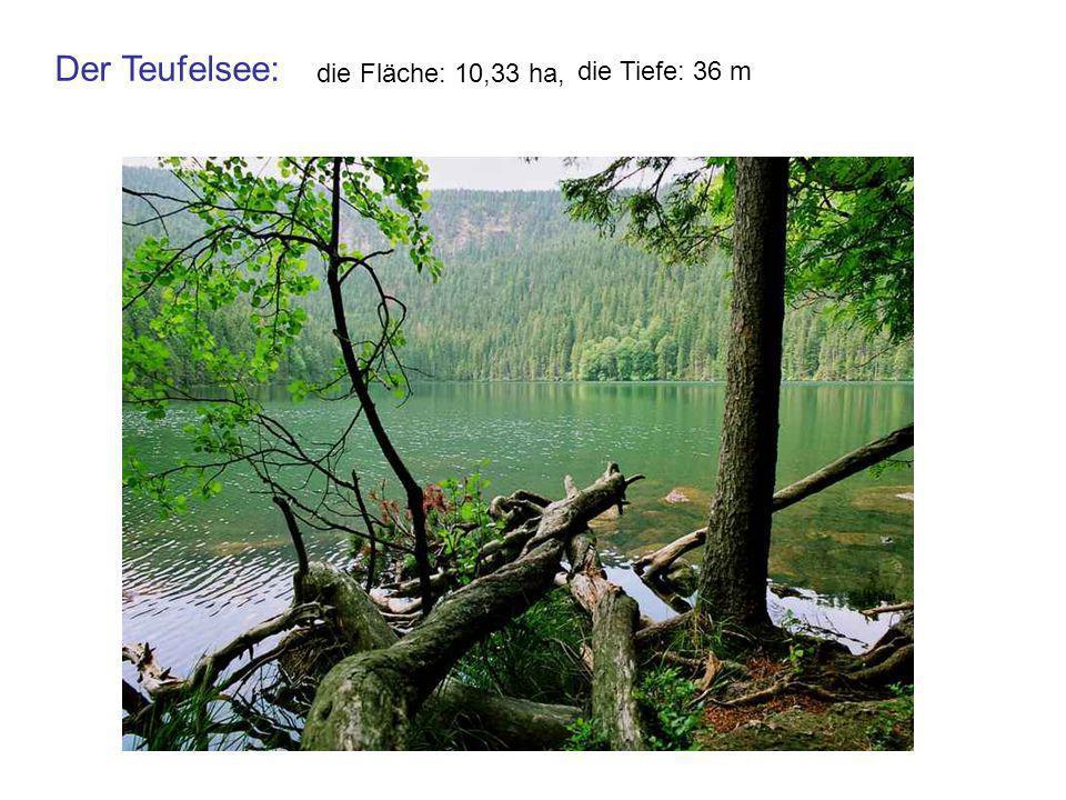 die Fläche: 10,33 ha, die Tiefe: 36 m Der Teufelsee: