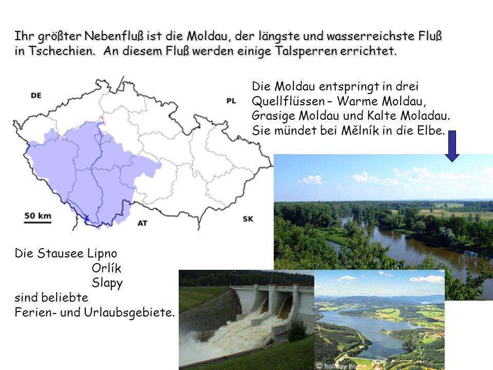 Ihr größter Nebenfluß ist die Moldau, der längste und wasserreichste Fluß in Tschechien. An diesem Fluß werden einige Talsperren errichtet. Die Moldau