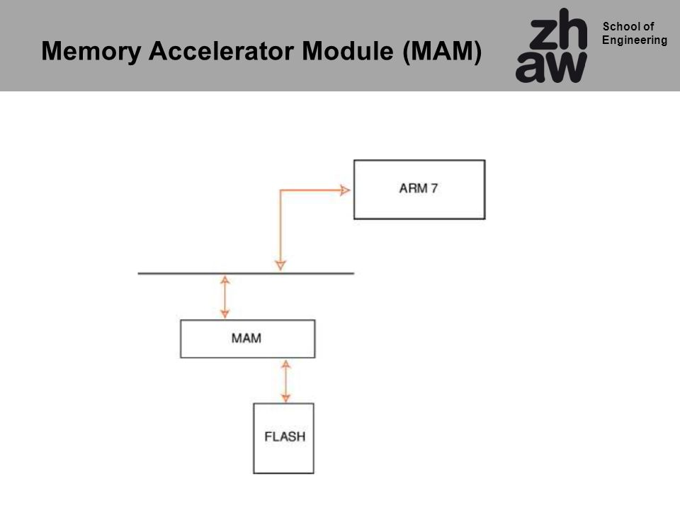 School of Engineering Memory Accelerator Module (MAM)