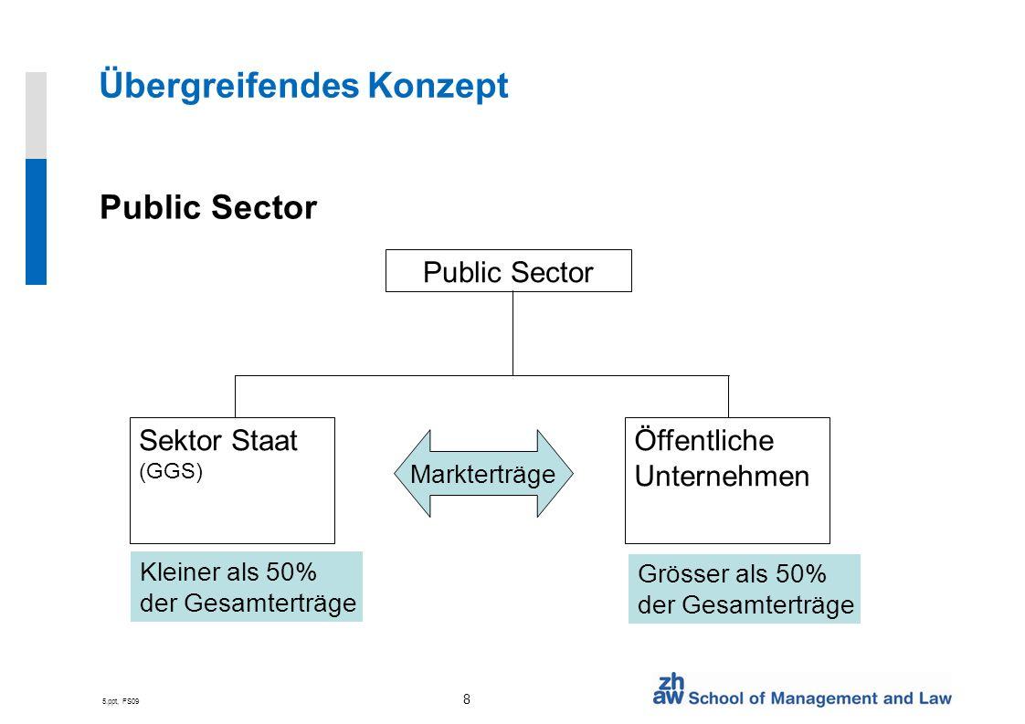 5.ppt, FS09 8 Übergreifendes Konzept Public Sector Sektor Staat (GGS) Öffentliche Unternehmen Kleiner als 50% der Gesamterträge Grösser als 50% der Gesamterträge Markterträge