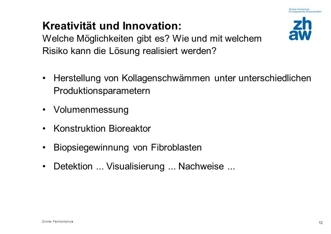 Zürcher Fachhochschule 12 Kreativität und Innovation: Welche Möglichkeiten gibt es? Wie und mit welchem Risiko kann die Lösung realisiert werden? Hers