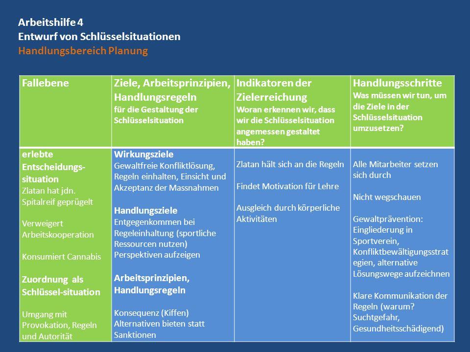 Arbeitshilfe 4 Entwurf von Schlüsselsituationen Handlungsbereich Planung Fallebene Ziele, Arbeitsprinzipien, Handlungsregeln für die Gestaltung der Sc