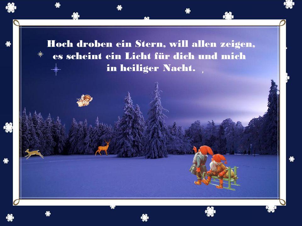 Leis fällt der Schnee, tief ist das Schweigen, Weihnacht kommt bald, die Sehnsucht erwacht.