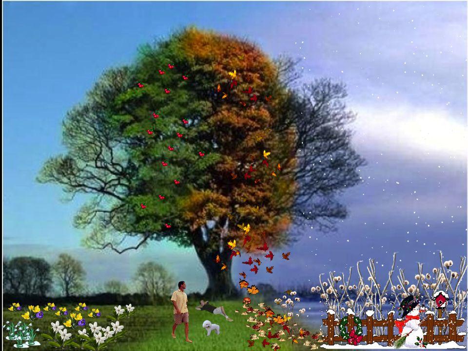 So wünsch ich dir aus reinem Herz, Mut, Liebe und Vertrauen, geh deinen Weg geradeaus und lern nach vorn zu schauen. L I E B E V E R T R A U E N M U T