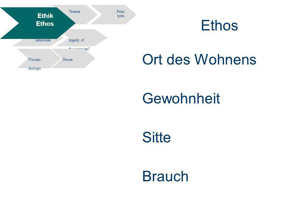 11 Information Engineering - Department of Computer and Information Science University of Constance Informationsethik- Wissen und Information in elektronischen Räumen - Potsdam 02.12.2004 Ethos Ort des Wohnens Gewohnheit Sitte Brauch ThemenPrinz ipien Widersprüche Interessem tragedy of the commons.