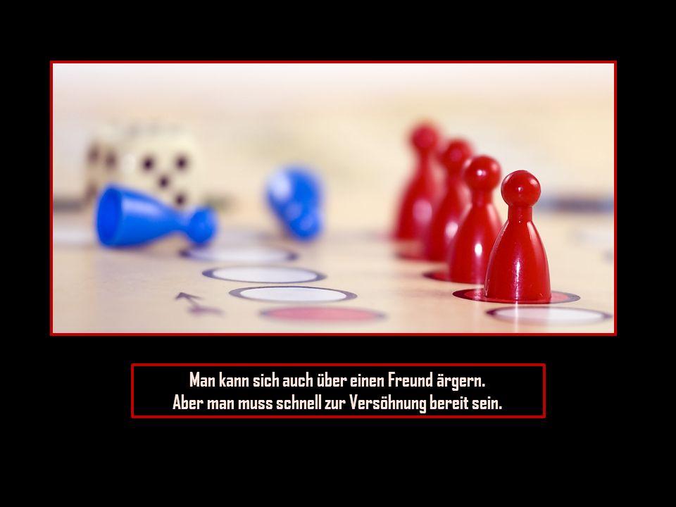 Man kann die Menschen entbehren, aber man bedarf eines Freundes.