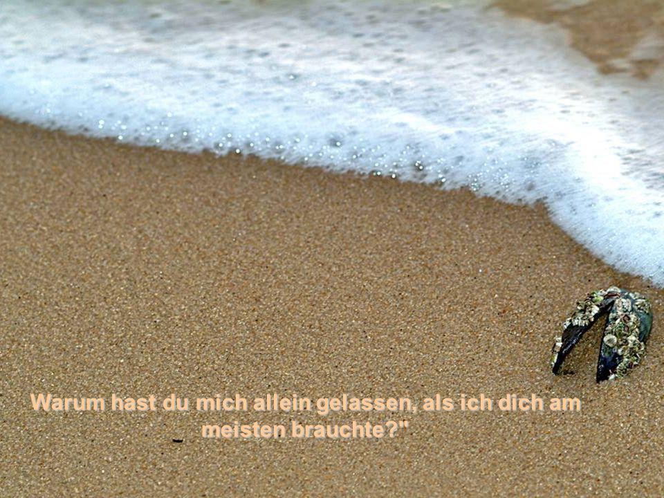 Aber jetzt entdecke ich, dass in den schwersten Zeiten meines Lebens nur eine Spur im Sand zu sehen ist…