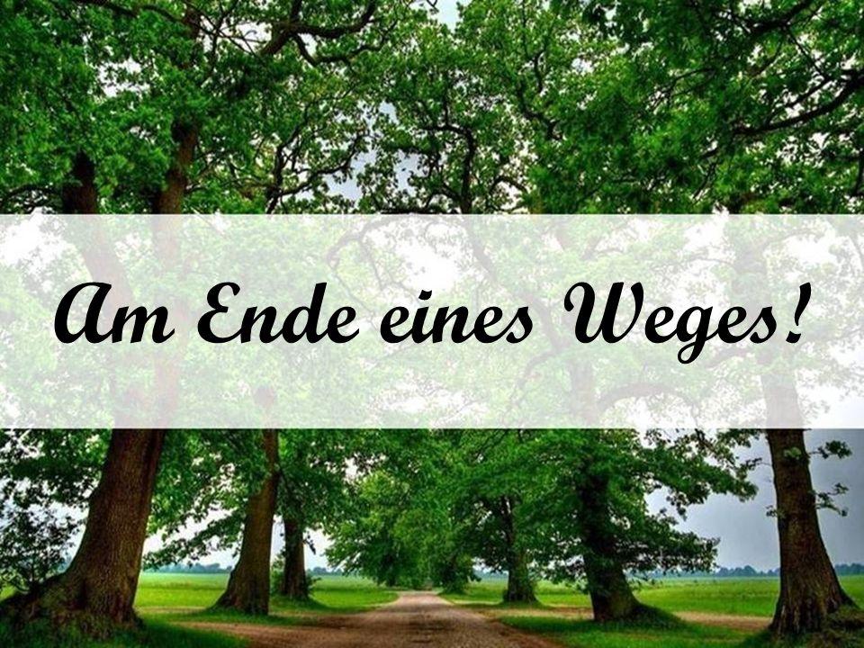 Am Ende eines Weges!
