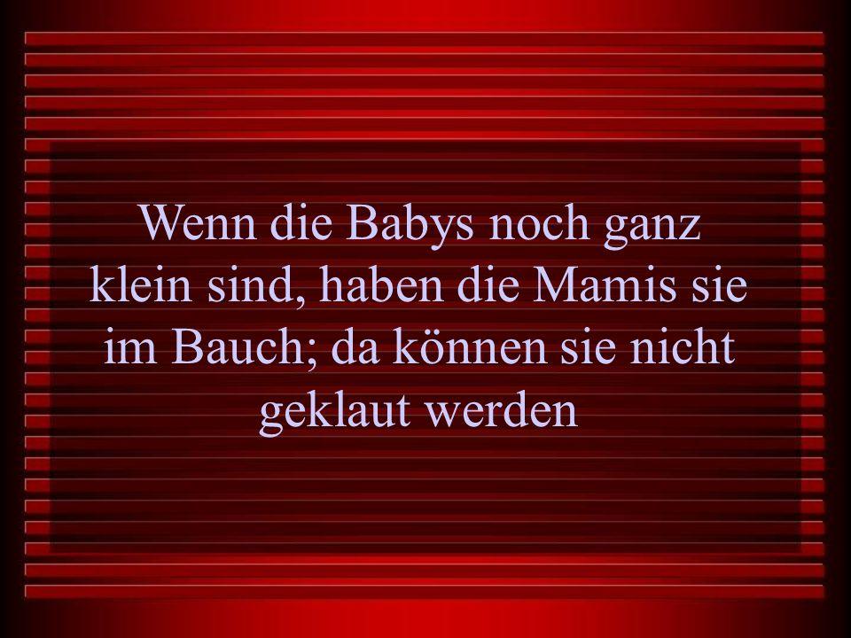 Wenn die Babys noch ganz klein sind, haben die Mamis sie im Bauch; da können sie nicht geklaut werden
