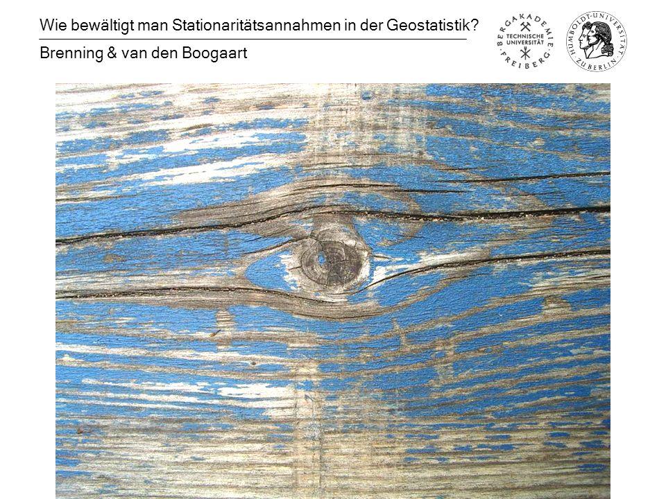 Wie bewältigt man Stationaritätsannahmen in der Geostatistik Brenning & van den Boogaart