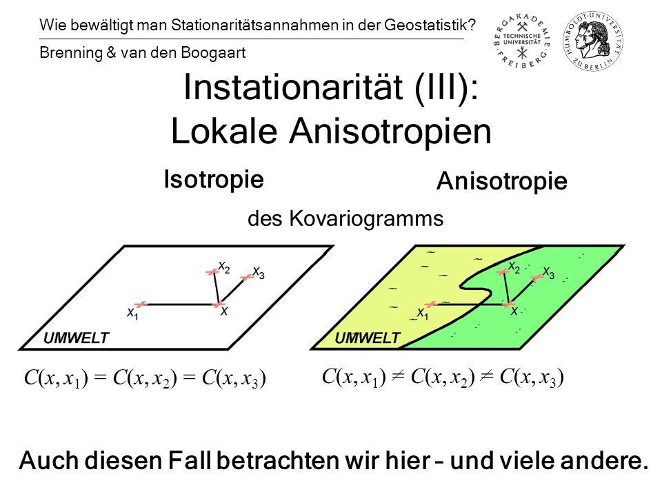 Instationarität (III): Lokale Anisotropien Wie bewältigt man Stationaritätsannahmen in der Geostatistik.